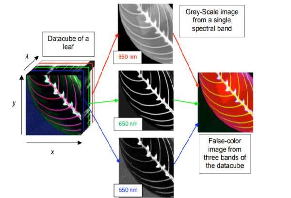 Công nghệ hình ảnh siêu phổ và ứng dụng
